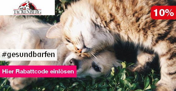 Tackenberg Rabattaktion